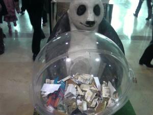 WWF Yardım Kutusu